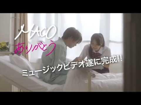 MACO - ありがとう(予告編)【MV完全版はdミュージックで9/24から独占配信!】