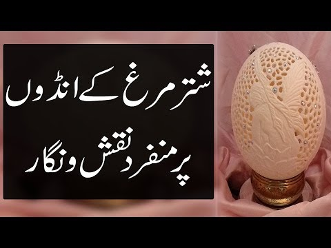 Russian artists paints OSTRICH EGGS for Easter