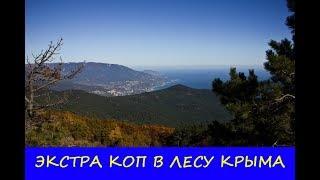 ЭКСТРА КОП В ЛЕСУ КРЫМА