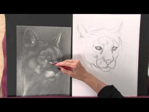 Art Lessons With Lee Hammond Draw Animals In Nature