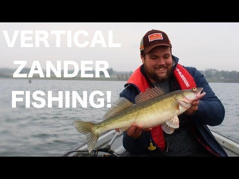 Vertical jigging for Zander! Rutland water Zander fishing in December