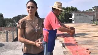 Aquí Estoy Morelos - Cecina de Yecapixtla