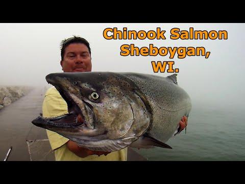 Sheboygan Fishing Guy. North Pier, July 24, 2016