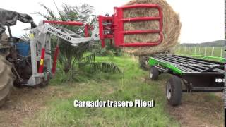 IDEAGRO - Entry 120 en Cultivo de Palma
