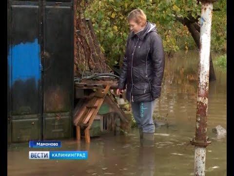 Из-за потопа жители Мамоново не могут выйти из подъездов и домов