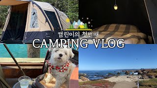 인생 첫 캠핑 브이로그 | 미국 캠핑 / 직구한 에어텐…