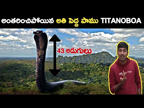 TOP BIGGEST SNAKE IN THE WORLD TITANOBOA |TOP 15 UNKNOWN FACTS |V R FACTS IN TELUGU |TELUGU