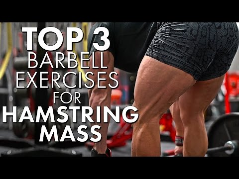 Top 3 Barbell Exercises for Hanging Hamstrings | Tiger Fitness