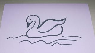 simple drawing swan draw drawings tutorial getdrawings paintingvalley