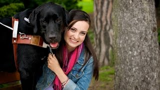 The Guide Dog Tag - Molly Burke