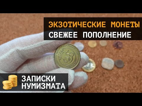 Экзотические монеты мира. Записки нумизмата