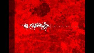 The Contortionist - Intro/Shapeshifter