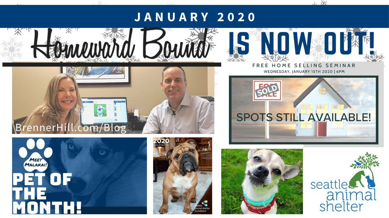 Homeward Bound | January 2020