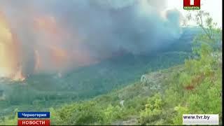 Заблудившийся в черногорских лесах турист спровоцировал пожар