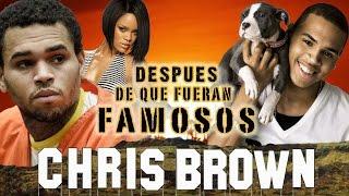 CHRIS BROW - Después De Que Fueran Famosos - RIHANNA