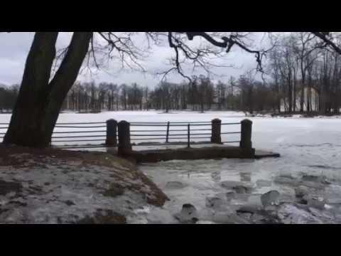 Изображение предпросмотра прочтения – АннаШаброва читает произведение «Весенние воды (Еще вполях белеет снег…)» Ф.И.Тютчева