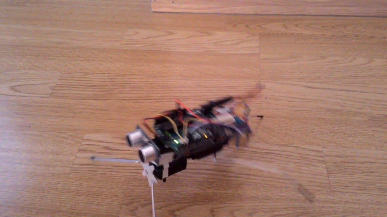 Arduino Insect Robot Youtube border=