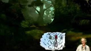 Deep Jungle Simulator Screensaver