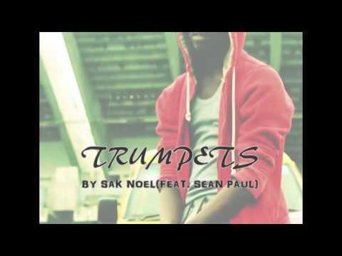#TrumpetsChallenge  Sak Noel & Salvi - Trumpets ft. Sean Paul   234DANCETV