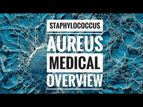 Staphylococcus aureus (MRSA)