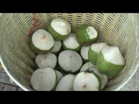 Amazing Peel Coconut Fresh I Bangkok in Thailand