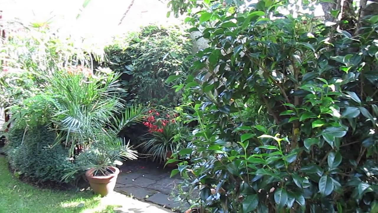 Palmen garten gronau im m nsterland youtube - Garten mit palmen gestalten ...
