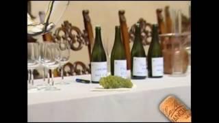Милан - экскурсии с  дегустацией вина. Франчакорта и её игристые , Италия.(, 2016-05-11T12:25:59.000Z)