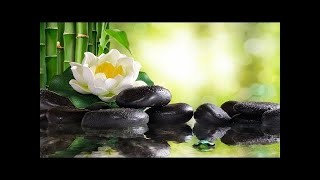 Relaxing Piano Music Soft Sleep Music, Water Sounds, Meditation Music, Relaxing Music ★102
