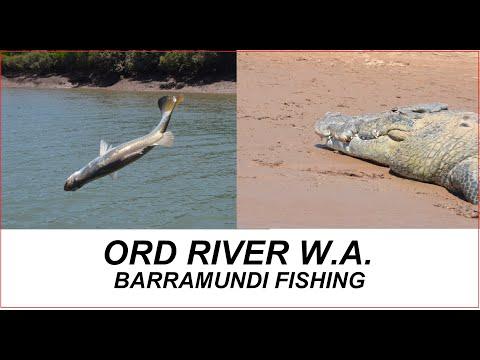W.A.  Mighty Ord River Barramundi Fishing