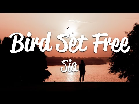 Sia - Bird Set Free (Lyrics)