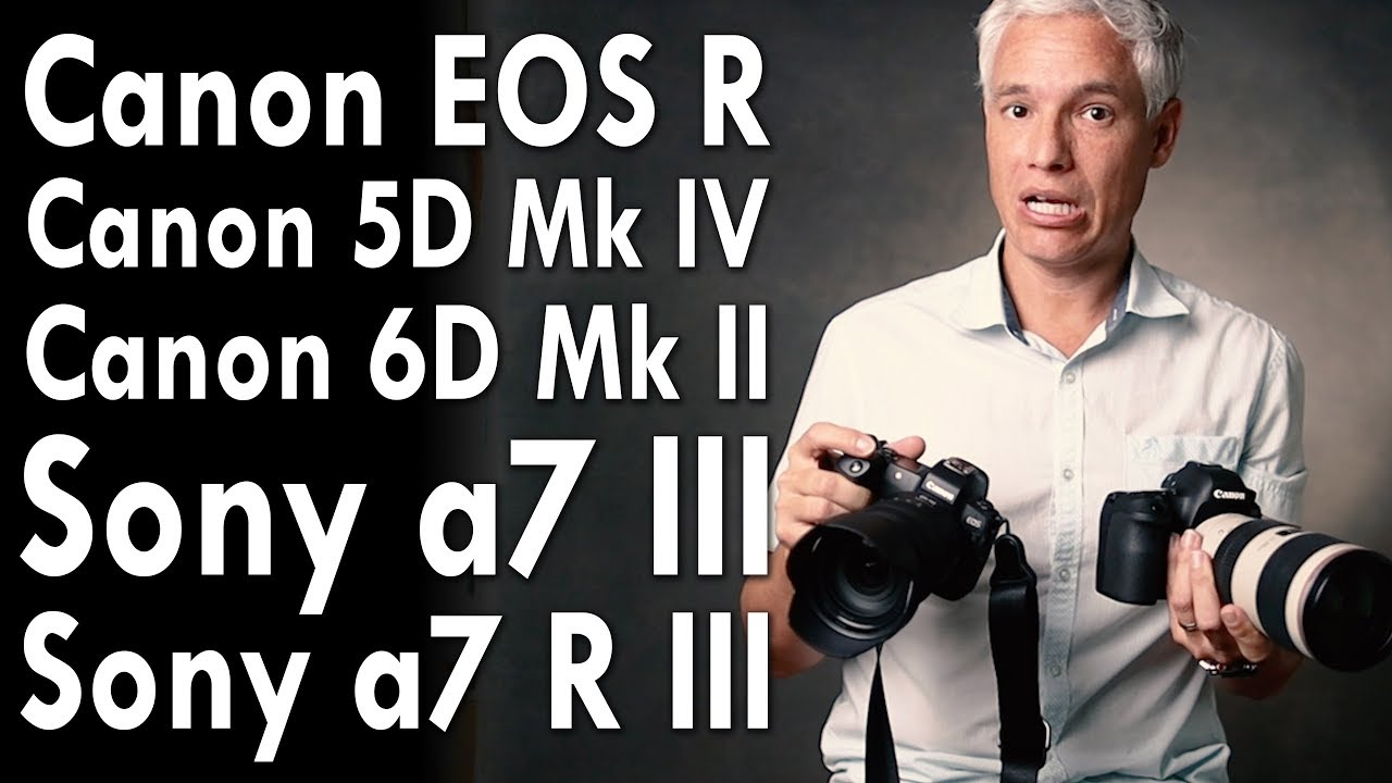 Canon EOS R Image Quality Comparison to Other Canon and Sony