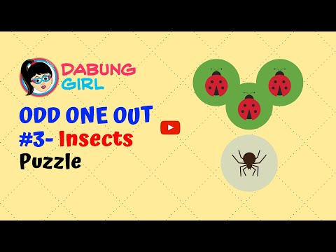 😎 Insects II - Odd One Out Paheliyan   Can you spot the odd one?   Puzzle #3   Dabung Girl
