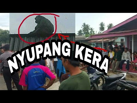 INDRAMAYU#DESA LARANGAN DI HEBOHKAN KERA JADI_jADIAN..!!!
