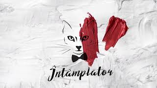 The Motans - Intamplator | Official Audio