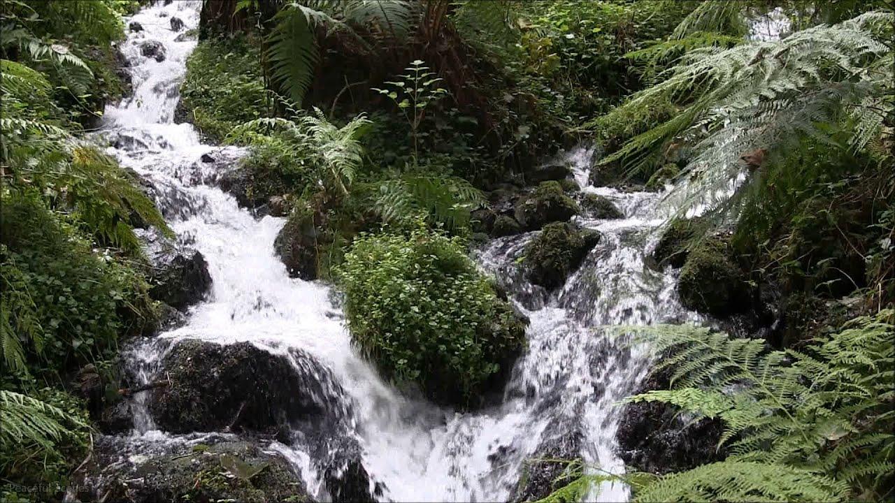 relaxing nature scene hd - rushing streams merging - relaxing water