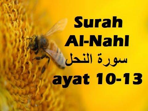 2012/11/05 Ustaz Shamsuri 756 - NE2 Surah An-Nahl Ayat 10-13