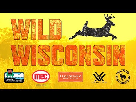 Wisconsin Deer Hunting: We Have It All! - Why Hunt Wisconsin? – Wild Wisconsin Ep. 3
