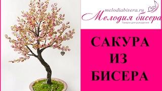 Дерево из бисера - САКУРА. Часть 1 - ВЕТОЧКИ. Мастер-класс