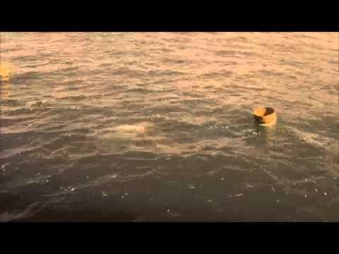 Ama Divers Interlude