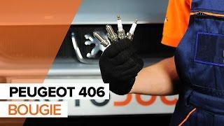 Instructieboekje Peugeot 406 Coupe online