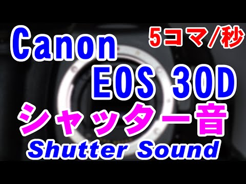 Canon EOS 30Dのシャッター音(Shutter Sound) [5コマ/秒]