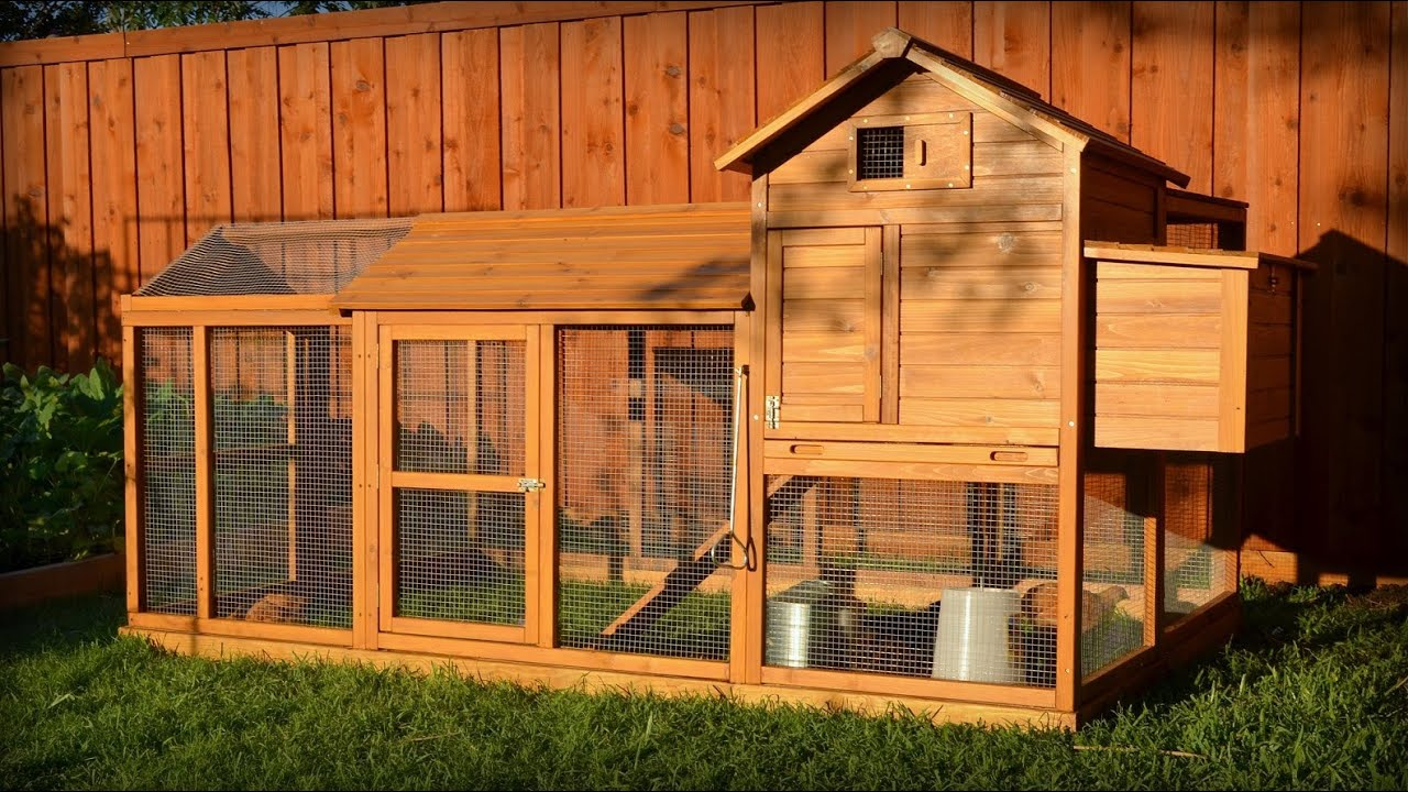 Building a chicken coop kit w additional modifications for Build a house kits