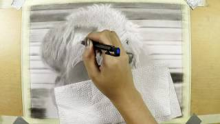A timelapse speed drawing of a Bichon Frise dog by PinayPencilArt