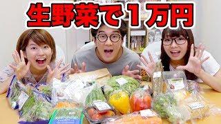 【実験】大量の生野菜を一万円分買って全部食べてみた!