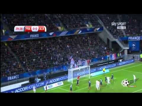 France vs Albania 1-1 2014 All Goals & Highlights