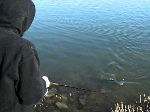 Fishing at otter creek reservoir youtube for Otter creek fishing report