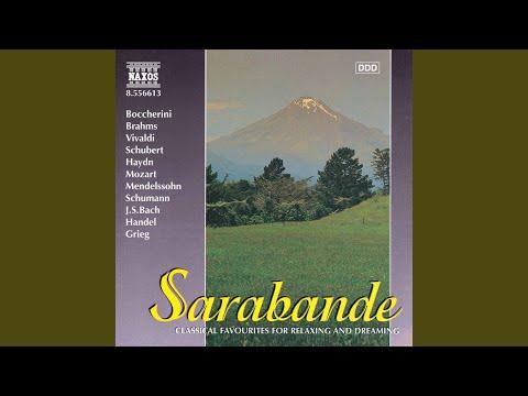 Violin Concerto No 5 in A Major, K 219 Turkish: Adagio