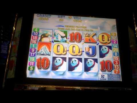 Video Pingwin casino
