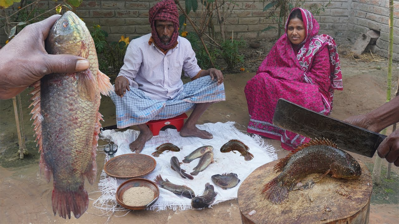 Village Food Koi Macher Kalia Recipe কই মাছের কালিয়া রান্না BIG SIZE KOI FISH CURRY Family Meal Prep