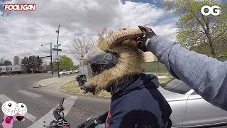 """Grom Squad in DENVER 